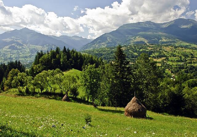 die-umwelt-plattform-natura-2000-in-der-marmarosch