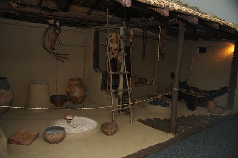 la-culture-cucuteni-poduri