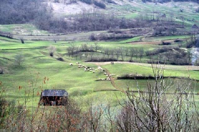 attractions-naturelles-dans-le-comte-de-bistrita-nasaud