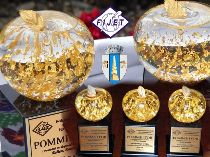 the-city-of-targu-jiu-is-to-receive-golden-apple-award