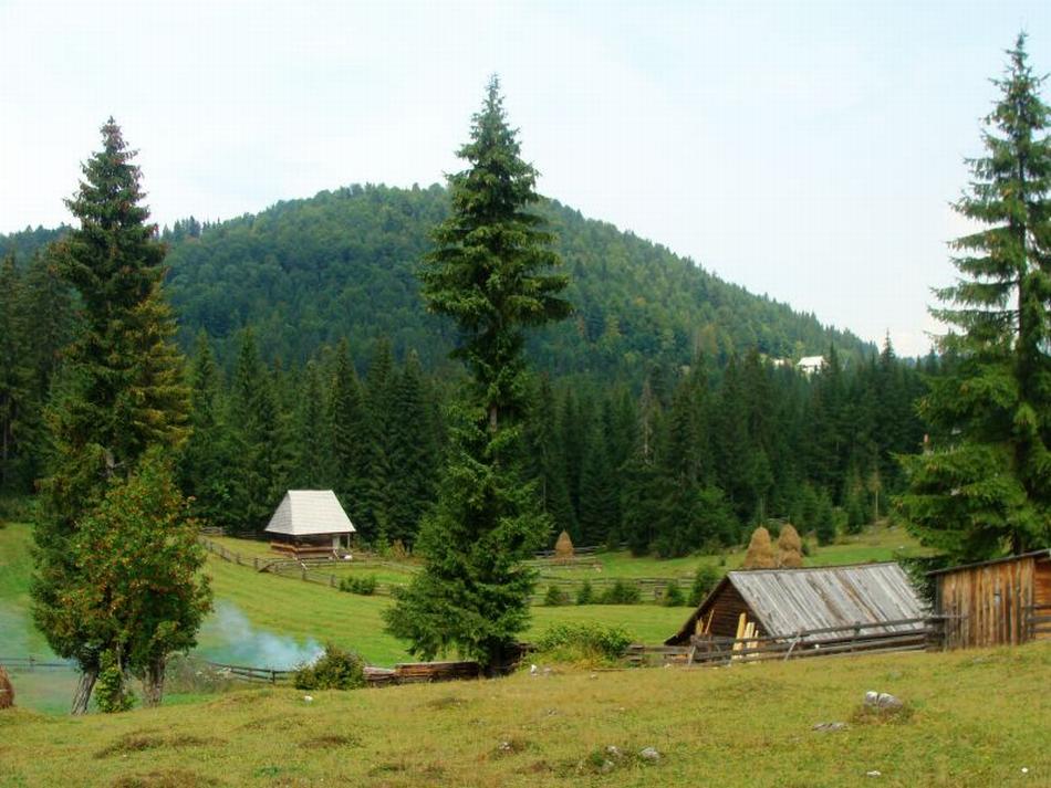 oferte-la-panaghirulu-di-turismu-a-romaniilei-editia-2014