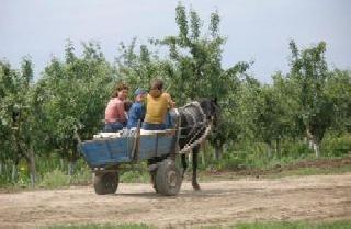 Rural Romanian Women 5