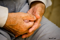 home-care-for-the-elderly-