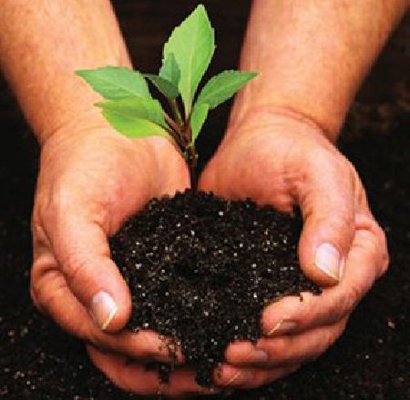 الأرض الصالحة للزراعة، استثمار مربح