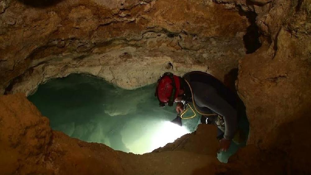 Movile Höhle
