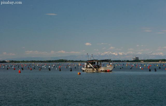noi-orientari-strategice-pentru-o-acvacultura-sustenabila-si-competitiva