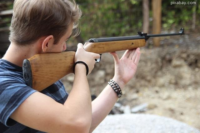 modificari-la-legea-armelor-si-munitiilor