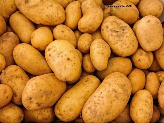 les-pommes-de-terre-nouvelles-