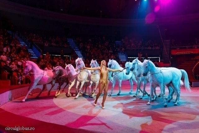 ban-on-wild-animal-shows