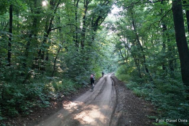 comana-nature-park