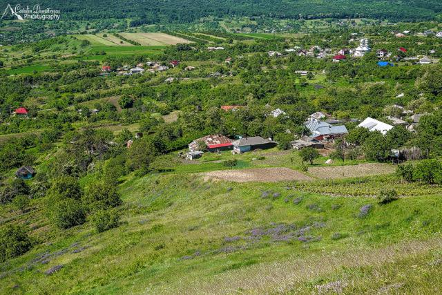 cotnari-in-der-moldau-weinverkostigung-und-mehr