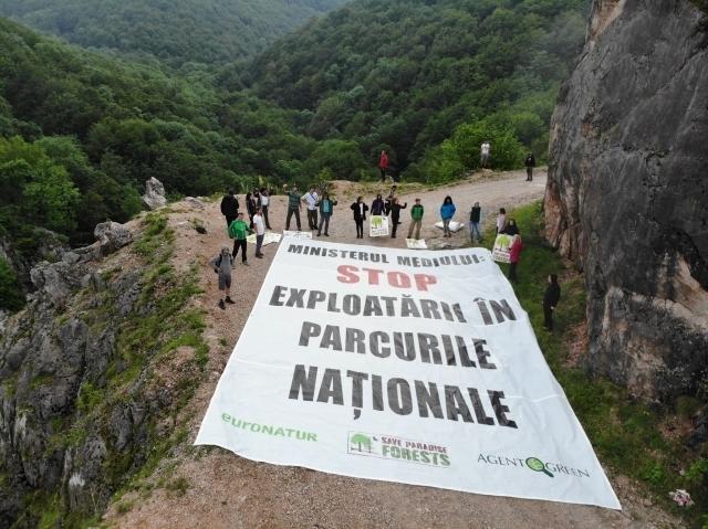 umweltschutzer-forstamt-traegt-mitschuld-an-illegalen-abholzungen-in-nationalparks