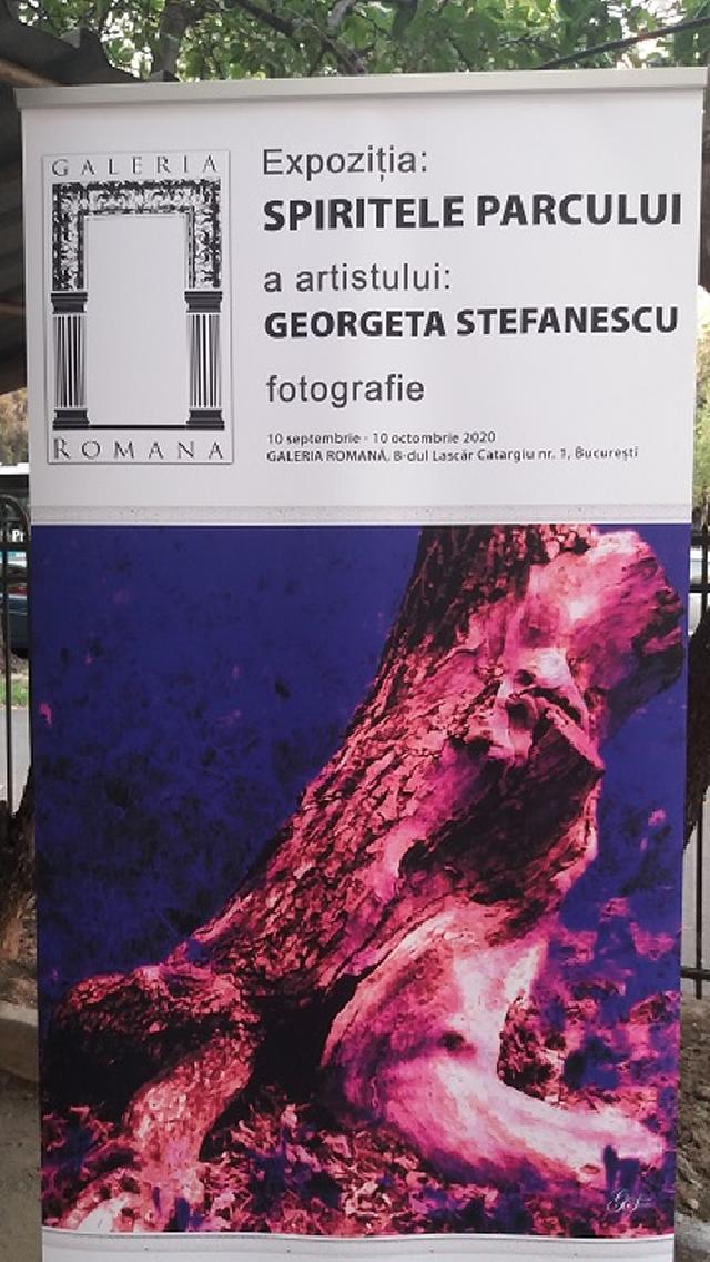 artista-plastica-georgeta-stefanescu-cetatean-roman-si-francez-stabilita-in-elvetia