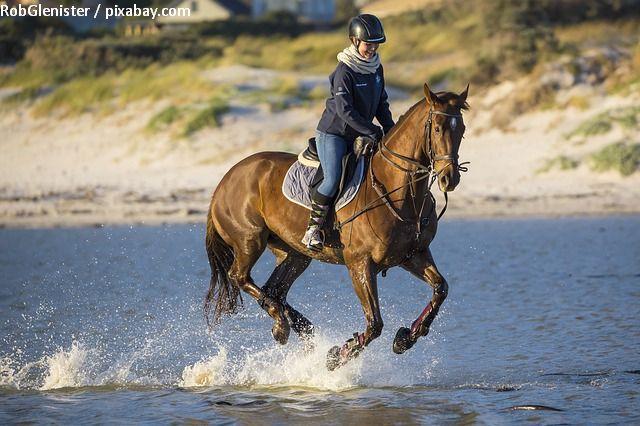 horseback-riding-in-romania---equitours