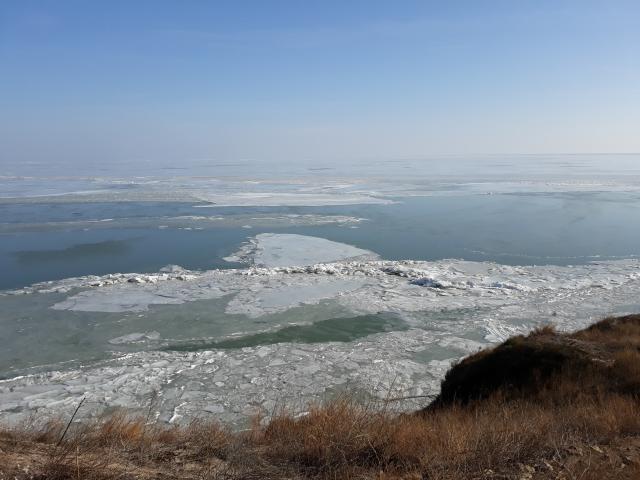 delta-dunarii-pe-timp-de-iarna