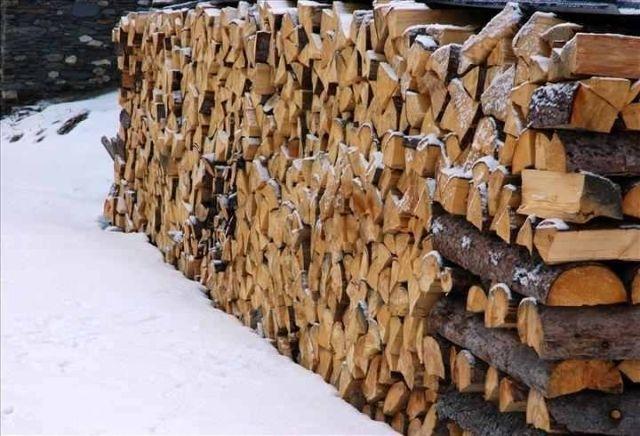 andre-biot-belgique---en-roumanie-les-particuliers-peuvent-ils-couper-du-bois-dans-les-forets