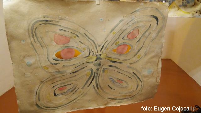 mudbutterflies