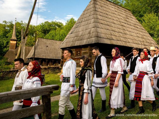 il museo della civiltà popolare tradizionale astra di sibiu