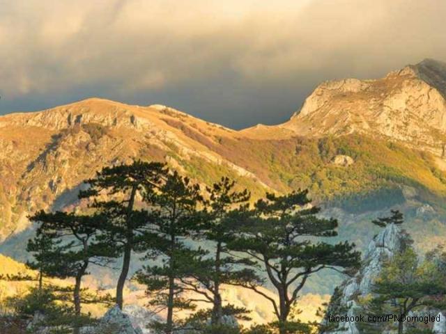 le-parc-national-domogled--vallee-de-la-cerna-