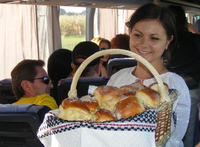 piatti della moldavia