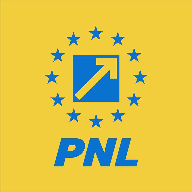 doi-candidati-pentru-sefia-pnl