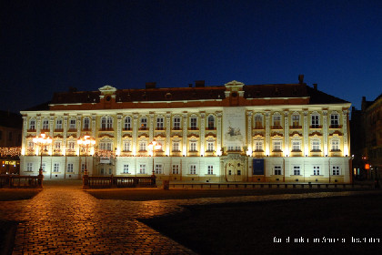 the-fine-arts-museum-in-timisoara