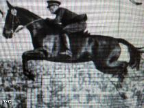 Călăreţul Henri Rang