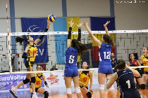 rri-sports-club--volleyball