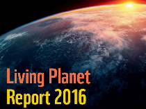 the-wwf-living-planet-report-2016-
