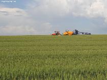Noi reguli de vânzare a terenurilor agricole